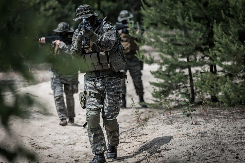 extarnjeros militares en estados unidos